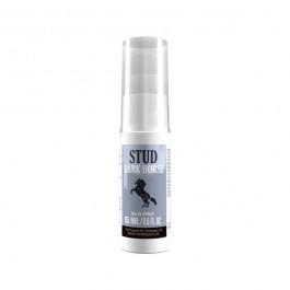 Dark Horse Stud Viivästyssuihke 15 ml